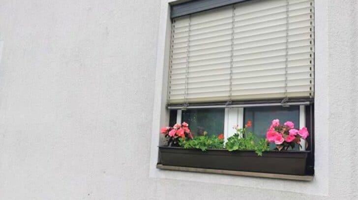 Die Leserin wurde aufgefordert, ihr Blumentröge zu entfernen.