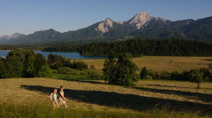 Der Kulturspaziergang führt unter anderem über die ausgedehnten Wiesen bei Drobollach am Faaker See.