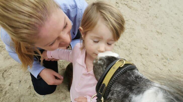 Die Pferde suchen vorsichtig Kontakt zu den Kindern.