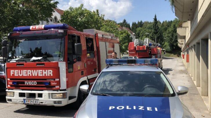 Die Einsatzkräfte rückten heute zu zwei Brandmelder-Alarmen und einer Tierbergung aus.