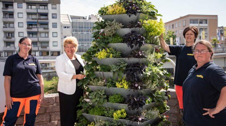 Vizebürgermeisterin Irene Hochstetter-Lackner mit von links Barbara Martin, Petra Buchmann und Conny Spasojevic vom Stadtgarten.