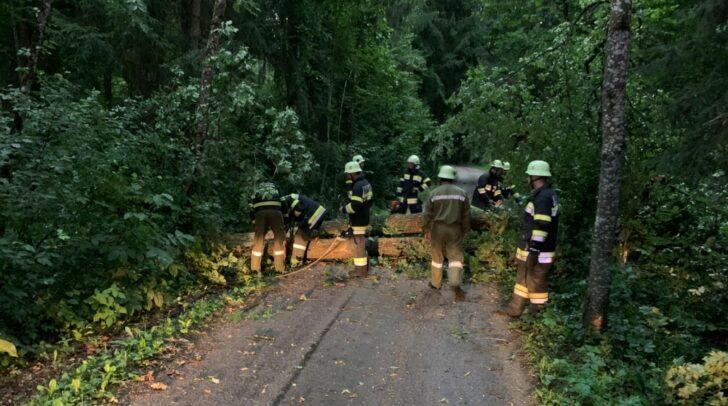 Im Bezirk Klagenfurt-Land kam es zu umgestürzten Bäumen und zahlreichen Überschwemmungen.