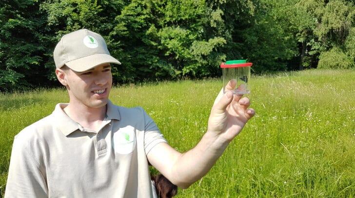 Die Ranger informieren bei Exkursionen über den besonderen Lebensraum am Lendspitz-Maiernigg.
