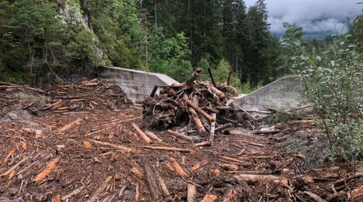 Unmengen an Steinen und Holz wurden bei den gestrigen Unwettern von den Regenmassen mitgerissen.