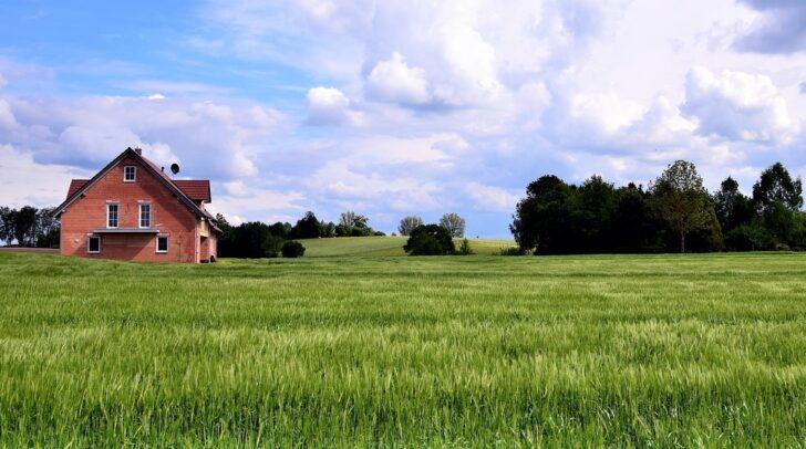 Ein Haus mitten in der Natur. Doch wie sieht es mit der Bebauung der Nachbargrundstücke aus?