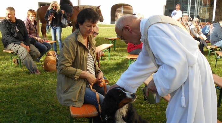 Rund um den Gedenktag des hl. Franz von Assisi finden in einigen Kärntner Pfarren Tiersegnungen statt (im Bild: Tiersegnung mit Diakon Pomprein in der Pfarre Viktring, 2017)
