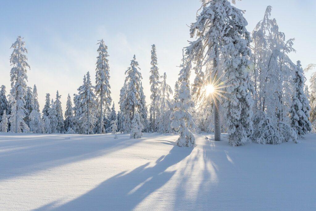 Schnee Kärnten