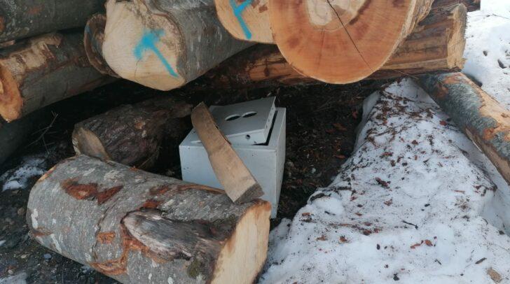 Der gestohlene Tresor konnte nur unweit der Gemeinde Hohenthurn aufgefunden werden. Die Wahlkarten waren noch darin aufbewahrt.