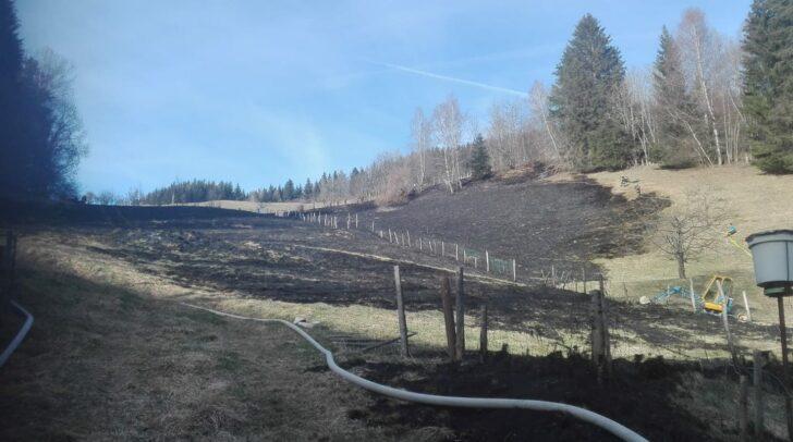 Etwa ein Hektar Wiesenfläche war heute Nachmittag in Brand geraten.