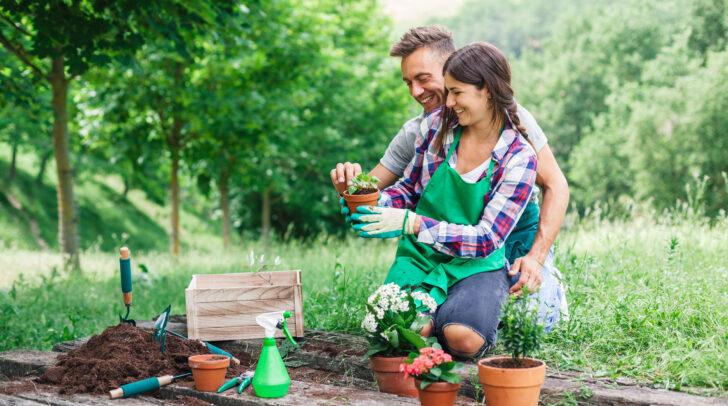 Frühlingszeit ist Gartenzeit: Es gibt einiges zu tun!