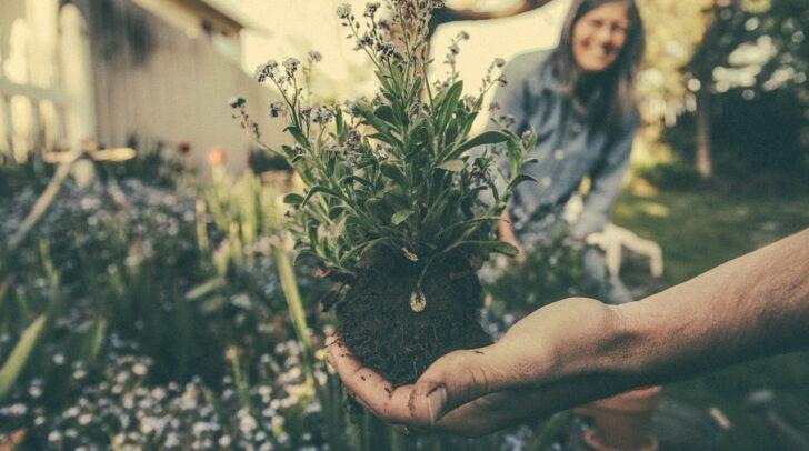 Gemeinsam macht Gartenarbeit mehr Spaß!