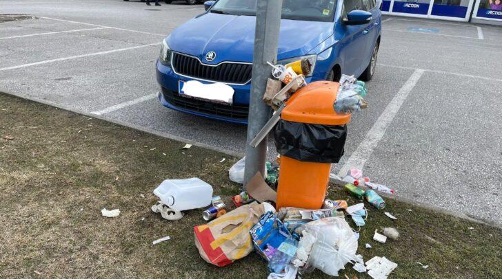 """Das sogenannte """"Littering"""", also das achtlose Wegwerfen von Abfällen, ist laut den Grünen Kärnten ein großes Problem für die Umwelt."""