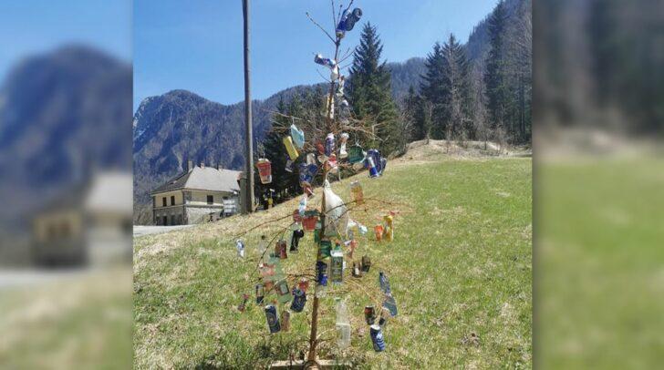 Dieser Baum ziert nun die Sapotnica in Ferlach.