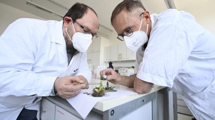 ILV-Leiter Gunther Vogl und sein Team wurden damit beauftragt, die Vergiftungsursache festzustellen.