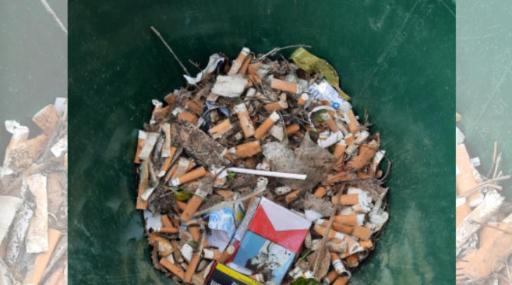 Vor allem die vielen Zigarettenstummel sind beim Cleanup am Silbersee aufgefallen.